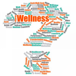 PAST: Wellness: What's The Evidence? by Kimberley Wilson CPsychol